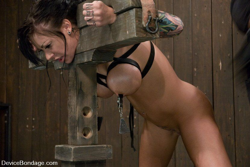 Appaloosa recomended galleries Free porn medieval bdsm