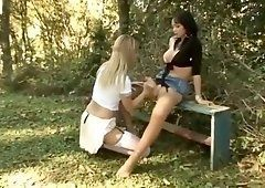Transgender dick outdoor blowjob pornstar theme, interesting