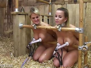 Asian Orgy Training Camp - Training camp bdsm story. Adult very hot archive FREE.
