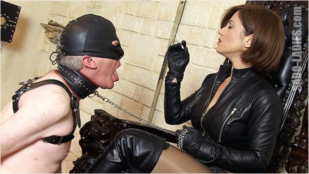 Home P. reccomend Leather domination free porn 3-way leather stud domination