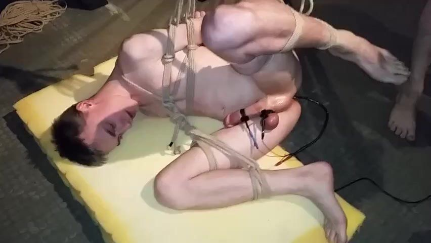 High-Octane reccomend Dominated twinks tube