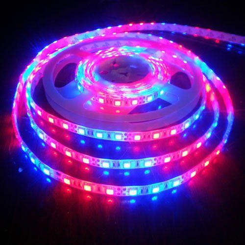 Led strip supplier