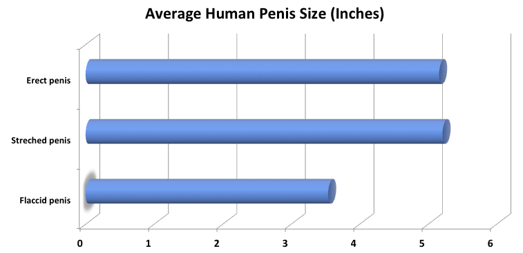best of Size Average black cock