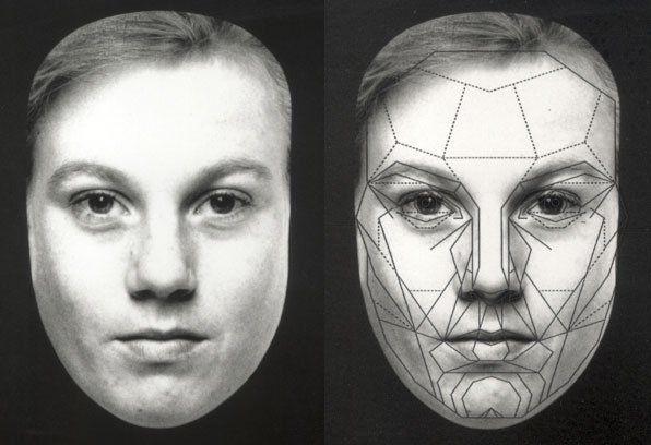 Yellowjacket reccomend Facial features golden ratio freeware