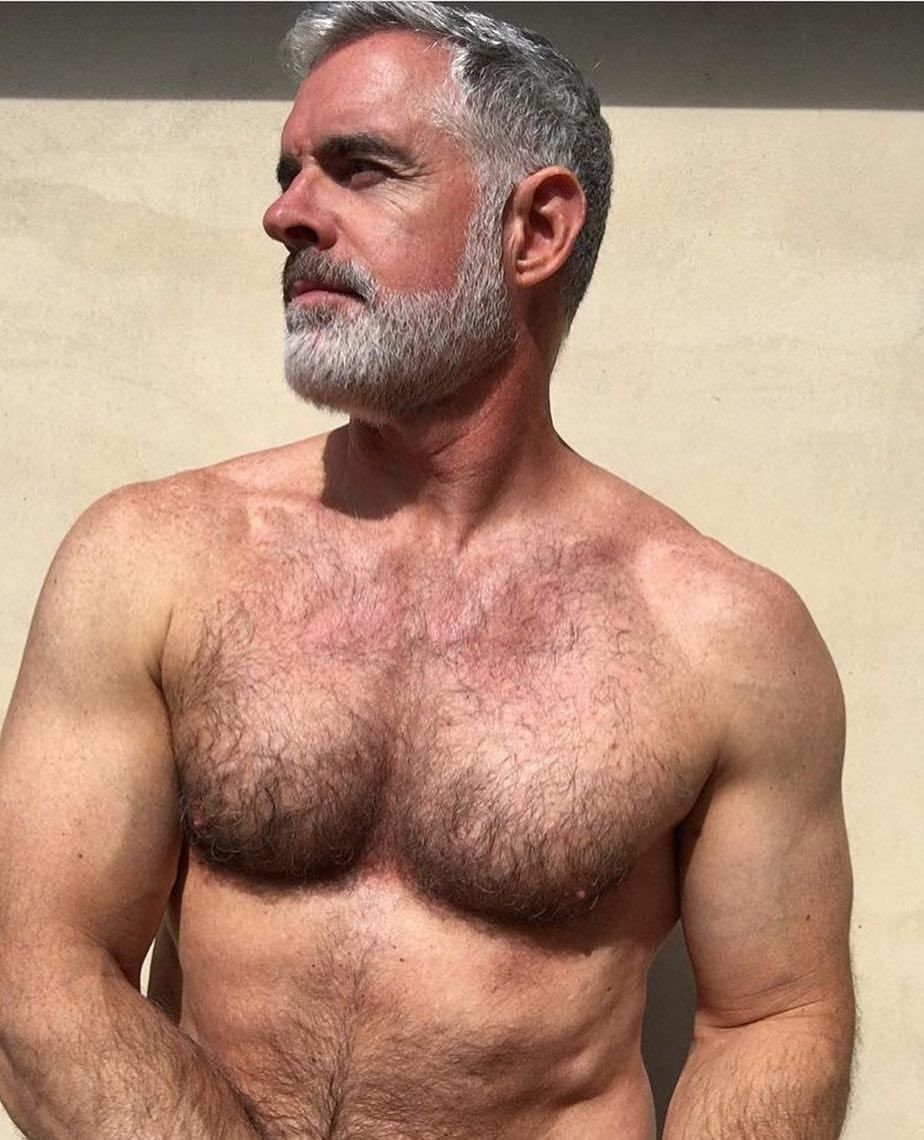Mature hairy chests . Adult Images.