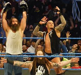 Champagne reccomend How tall is bray wyatt
